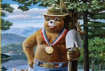 Smokey Bear / Through the Cooperative Forest Fire Prevention Committee, NASF works with its partners at the USDA Forest Service and the Ad Council to support the message of Smokey Bear, the national symbol for fire prevention. Only you!