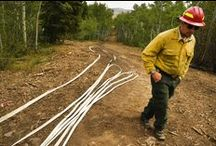 Fighting Wildfire / When it comes to wildfire, prevention and mitigation are key.