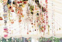 ceiling / 吊るす系