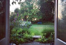 **Ben Pentreath's garden**