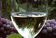 French Vineyards and Wine / Come to discover what makes France exceptional. The famous French vineyards await you and offer you visits and tastings with professional winegrowers. It is the moment to taste the subtleties of the French wine...