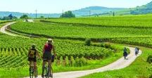 Bicycle getaway / Cycling in France is really great. Many roads in each region are adapted to this practice. This allows to discover the beauty of the landscapes quietly and at its own pace. Because vacationing is taking time to discover and enjoy the present moment.