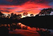Costa Rica - Call of the Wild