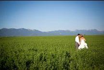 Montana Weddings / Something old, something new, something borrowed, something blue
