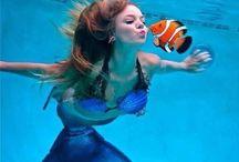 MERMAID / Siren of the sea