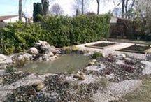 Jardin Sauvage / Entreprise de création de jardin