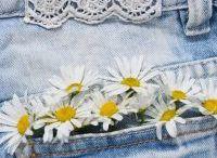 Pockets Full Of Daisies Blog