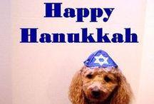 Hanukkah / In celebration of Hanukkah, enjoy some fun pins!