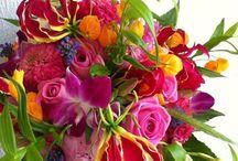 Floral colorsplash