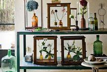 Trend: Floral Biology