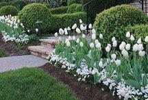*** Gardening & horticulture