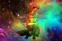 Fox Creativity