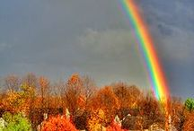 Rainbow by Nature