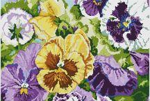 Violets & Pansies