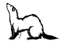 Ferret Art !3