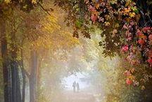 Autumn / fall / #autumn # travel