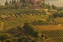 62 Toscana... e Versilia...
