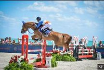 The Flying Horses / Show jumping