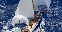 sail away with me _/) _/) / Sailing around the world. #sail # sailing # sailaway # travel #sea