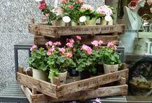 ✿ My Little Garden / Small Garden Ideas & Small Garden Designs