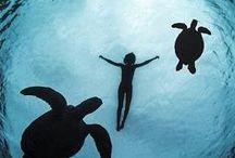 Underwater Adventure / Creative Photography – People Underwater