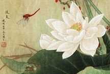 Chinese Painting -- Lotus / The beautiful lotus! Read more about it at www.visiontimes.com