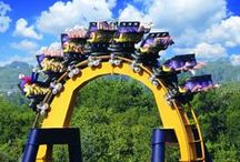 The World's Biggest Roller Coasters / Here you'll find locations to the tallest, fastest and all around biggest roller coasters the world has to offer.