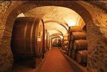 Colline Novaresi wine producer and degustation www.dimoredarte.com / Visit the wine farm