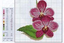Patterns / Cross stitch