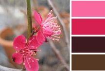 Color palettes / Цветовете и цветовите схеми намират приложение във всеки графичен проект, в модата, в интериорния дизайн, архитектурата, декорацията! Често прибягваме до сезонни тенденции и готови цветни палитри, които ни допадат и обикновено са създадени от специалисти с опит в съчетаването на цветовете. Ние също имаме нашето вдъхновение, идващо от природата и ежедневието! Споделяме го с вас тук!  Color palette from garden-design.bg