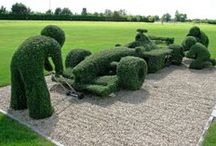 Topiary and Garden Art / Topiary is an art that strives to demonstrate the skill of gardeners. It is the art of pruning evergreen plants into artificial and geometric forms. Hedges shaped into balls, pyramids, cubes, arches and even animals!