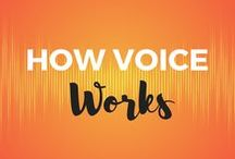 How Voice Works / Practical anatomy and physiology of voice for voice users. Vocal folds, larynx, pharynx are just a few examples of what you learn about from these pins.