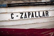 Zapallar / Zapallar, V región, Chile.
