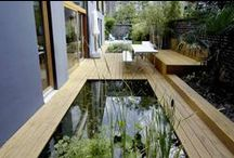 Patios and small gardens