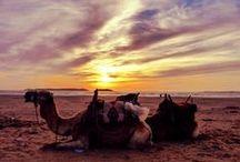 Berbers / Berberse cultuur in Marrakesh, Imlill en de Ourika Vallei. #3TBBC #NHTV #Hetberberseleven