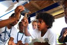 Summer Camp / Photos from our Summer Camp programs on Blue Lagoon Island!