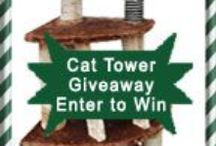 Cat Towers / Cat towers are very useful as long as you have enough space where to put one of them. Your cat can use it for scratching, climbing, for resting or just sleeping on its shelves or perches.
