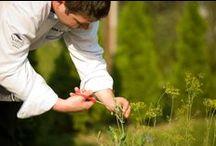 Ogródek / Aruana wykorzystuje zioła uprawiane w przyhotelowym ogródku
