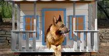 Casetas para perros / wooden dog houses / Casetas para perros aisladas termicamente de gran tamaño, fabricadas artesanalmente en madera.