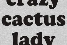 Funcactus