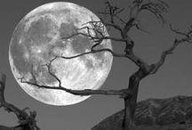 A hold - földi kísérőnk./MOON.