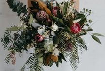 Protea Wedding Floral Inspiration / Protea Wedding Floral Inspiration : A fun and unique component used in wedding bouquets and floral decor for the modern and traditional bride using inspiring Unique, Organic, Earthy, Wild and Textural components made with real, raw, natural elements to capture the eye. Protea wedding floral inspiration in coloring, texture, and variety for the west coast and Utah brides for their weddings.