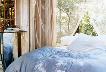 Daydream room
