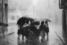 Ame (Rainy) / by Masala Chai