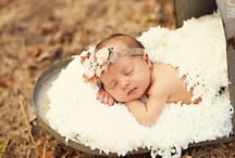 Photography - Newborns & Babies / by Amber Marie