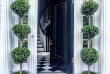 Front Door Topiaries / Front door and front porch topiaries and gardening ideas