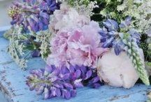 Çiçek,Mutluluk,Dinginlik...