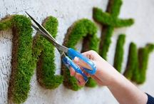 Plantspired/ Premicultural Projects / Indoor & Outdoor gardening ideas