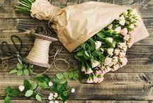 Friday flowers / Lovely Friday flowers