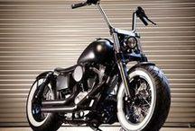 Harleys / Motos